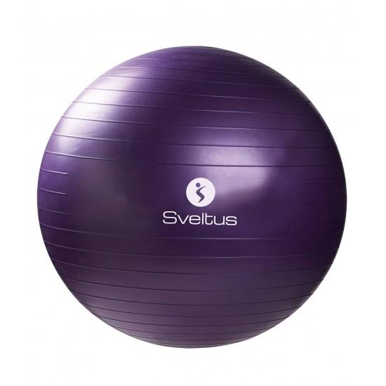 Gymball parme Ø75 cm vrac